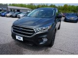 2019 Magnetic Ford Escape SE #133439309