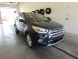 2019 Baltic Sea Green Ford Escape SEL 4WD #133445154