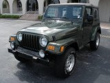 2006 Jeep Green Metallic Jeep Wrangler X 4x4 #13307958