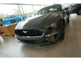 2019 Magnetic Ford Mustang GT Fastback #133461931