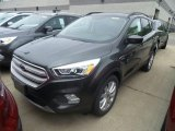 2019 Magnetic Ford Escape SEL #133527597