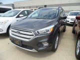 2019 Magnetic Ford Escape SEL #133557507
