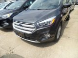 2019 Magnetic Ford Escape SEL #133557497