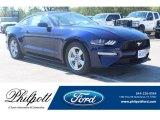 2019 Kona Blue Ford Mustang EcoBoost Fastback #133758012