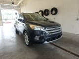 2019 Baltic Sea Green Ford Escape Titanium 4WD #133763182