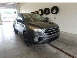 2019 Magnetic Ford Escape SE 4WD #133763178