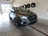2019 Magnetic Ford Escape SEL 4WD #133763177