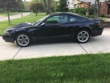 2001 Black Ford Mustang GT Coupe #133766075