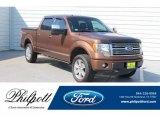 2011 Golden Bronze Metallic Ford F150 Platinum SuperCrew 4x4 #133784496