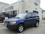 2006 Sonic Blue Metallic Ford Escape XLT V6 4WD #13368759