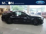 2019 Shadow Black Ford Mustang Shelby GT350 #133937861