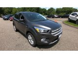 2019 Magnetic Ford Escape SE 4WD #133979435