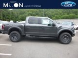 2019 Magnetic Ford F150 SVT Raptor SuperCrew 4x4 #133995529