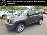 2019 Granite Crystal Metallic Jeep Renegade Latitude 4x4 #133995451