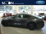 2019 Magnetic Ford Mustang Shelby GT350 #134099405