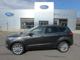 2019 Magnetic Ford Escape SEL 4WD #134139478