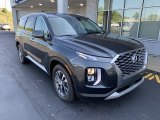 Hyundai Palisade Data, Info and Specs