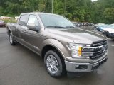2019 Ford F150 Stone Gray