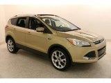 2014 Karat Gold Ford Escape Titanium 2.0L EcoBoost 4WD #134247552
