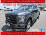 2015 Magnetic Metallic Ford F150 XL SuperCab #134283848