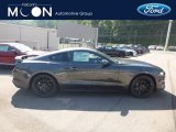 2019 Magnetic Ford Mustang EcoBoost Fastback #134289523