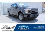 2019 Magnetic Ford F150 XLT SuperCrew #134337726