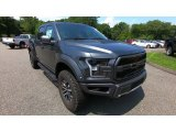 2019 Magnetic Ford F150 SVT Raptor SuperCrew 4x4 #134478542