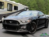2017 Shadow Black Ford Mustang GT Premium Coupe #134520347