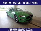 2019 Need For Green Ford Mustang EcoBoost Convertible #134588809