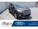 2019 Magnetic Ford Escape SE #134742654