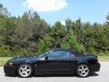 2003 Black Ford Mustang Cobra Convertible #134765910