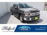 2019 Magnetic Ford F150 XLT SuperCrew #134826122