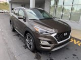 Hyundai Tucson Data, Info and Specs