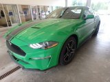 Need For Green Ford Mustang in 2019