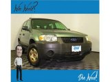 2006 Titanium Green Metallic Ford Escape XLS 4WD #135051635