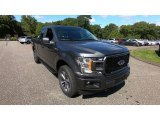 2019 Magnetic Ford F150 STX SuperCab 4x4 #135088468