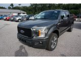 2019 Magnetic Ford F150 STX SuperCrew 4x4 #135098466