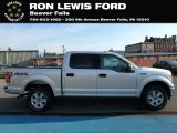 2019 Ingot Silver Ford F150 XLT SuperCrew 4x4 #135117111