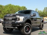 2019 Agate Black Ford F150 Shelby Cobra Edition SuperCrew 4x4 #135177796