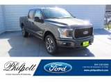 2019 Magnetic Ford F150 STX SuperCrew 4x4 #135328753