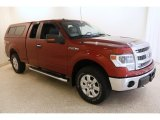 2014 Sunset Ford F150 XLT SuperCab 4x4 #135469743