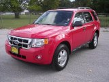 2009 Torch Red Ford Escape XLT #1347749