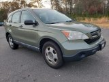 Green Tea Metallic Honda CR-V in 2009