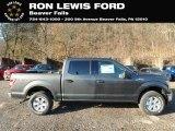 2019 Magnetic Ford F150 XLT SuperCrew 4x4 #136216829