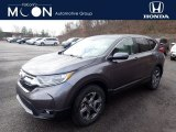 2019 Modern Steel Metallic Honda CR-V EX AWD #136233598