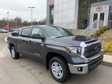 2020 Magnetic Gray Metallic Toyota Tundra SR5 CrewMax 4x4 #136341988