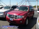 2009 Sangria Red Metallic Ford Escape XLT V6 #13620054