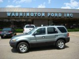 2006 Titanium Green Metallic Ford Escape XLT V6 4WD #13615715