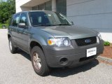 2006 Titanium Green Metallic Ford Escape XLS 4WD #13615704