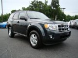 2009 Black Pearl Slate Metallic Ford Escape XLT #13610740
